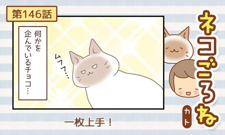 【まんが】第146話:【一枚上手!】まんが描き下ろし連載♪ ネコごろね(著者:カト)