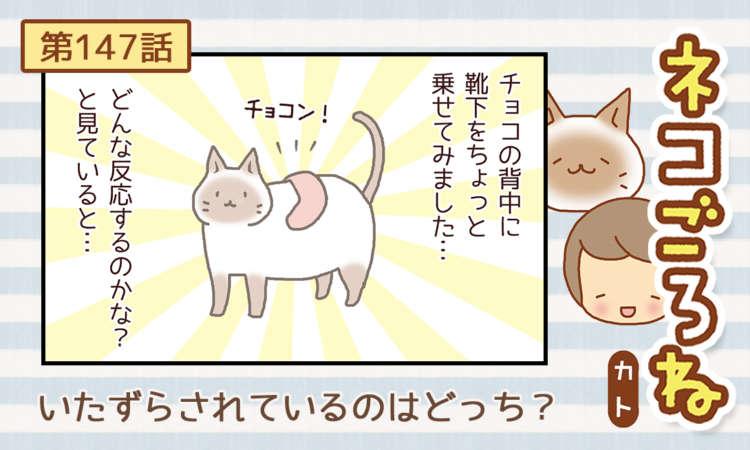 【まんが】第147話:【いたずらされているのはどっち?】まんが描き下ろし連載♪ ネコごろね