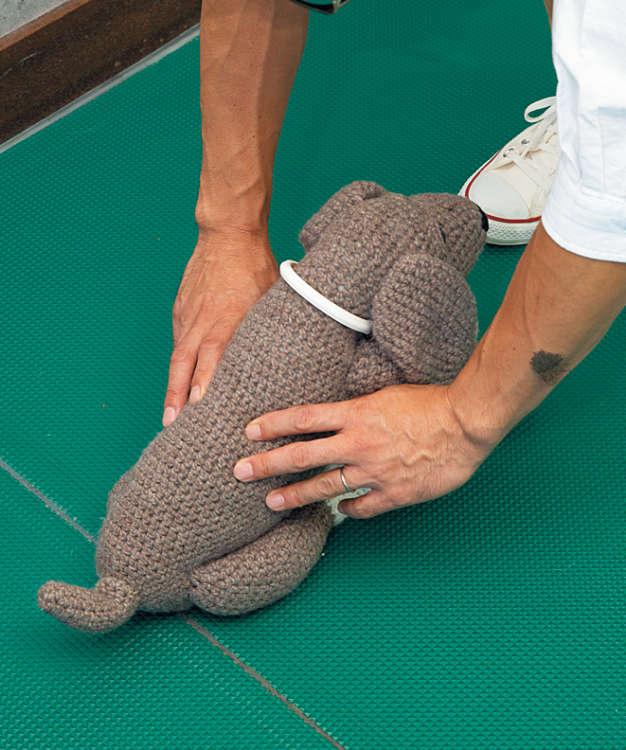 小型犬にやりがちな脇の下に手を入れ持ち上げる方法。腰に負担がかかり危険です