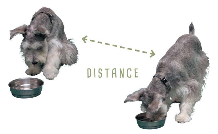 距離をとり安心できる環境づくりを!