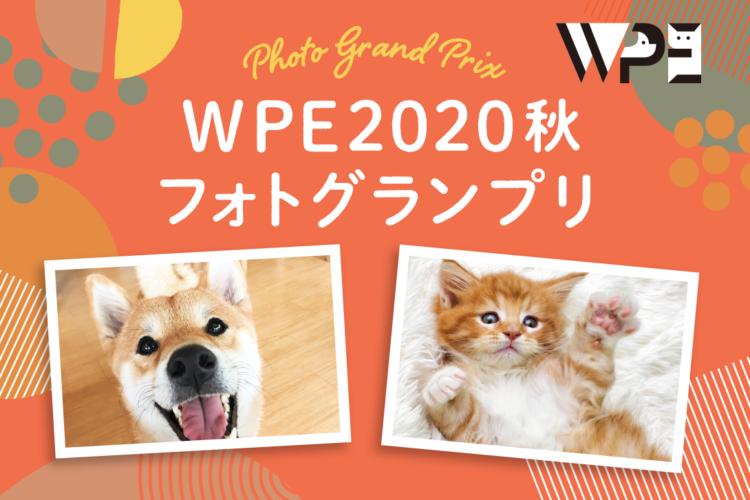 【#WPE2020秋フォトグランプリ】でうちの子の写真を大募集!!