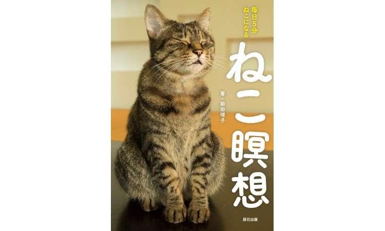 「ブレないわたしを作る」を猫に教わる?『ねこ瞑想 毎日5分 ねこになる』は世界一やさしい瞑想入門書
