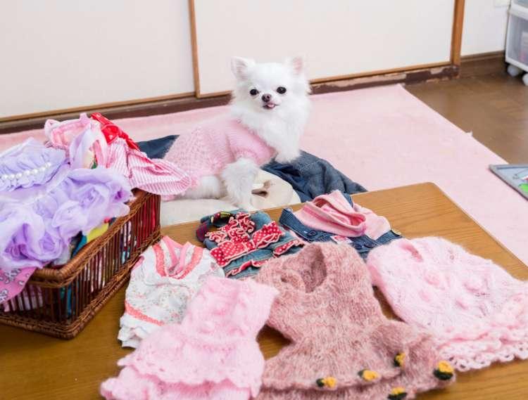 ママの手編みもあるよ!