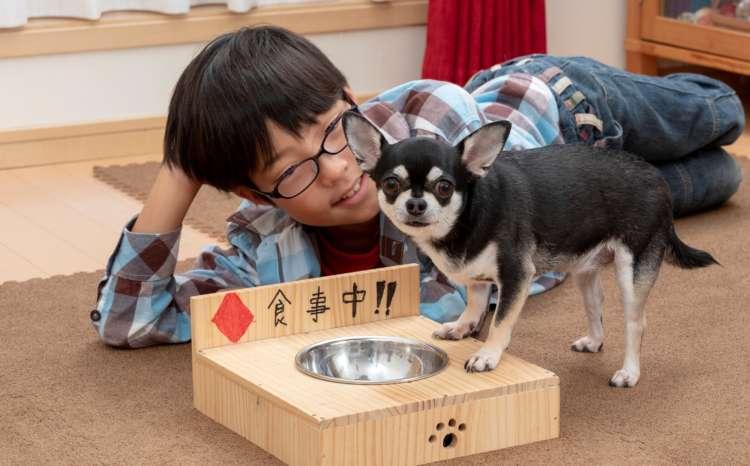 昨年の夏、夏の自由研究で輝さんがお父さんと一緒に作ったモモの食器台
