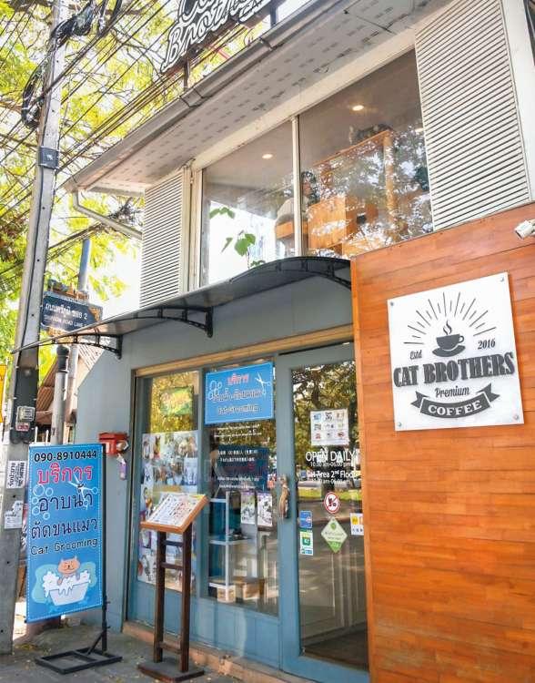 Cat Brothers Café
