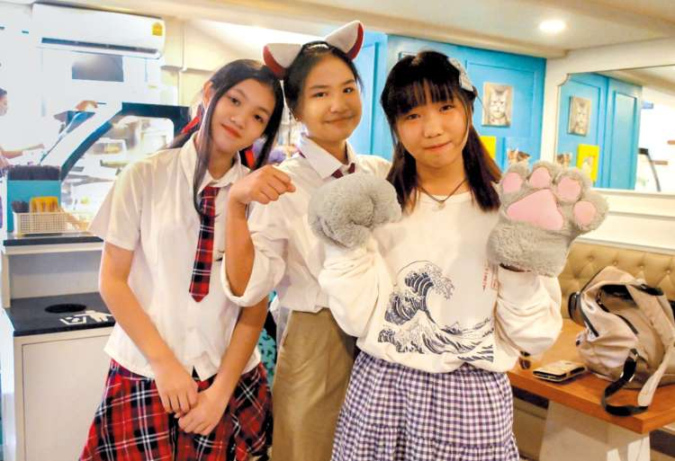 可愛い猫コスプレをした地元の女の子たち
