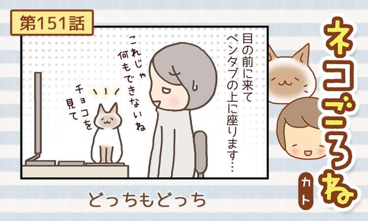 【まんが】第151話:【どっちもどっち】まんが描き下ろし連載♪ ネコごろね(著者:カト)
