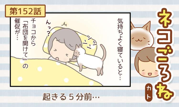【まんが】第152話:【起きる5分前…】まんが描き下ろし連載♪ ネコごろね(著者:カト)