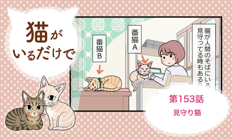 【まんが】第153話:【見守り猫】まんが描き下ろし連載♪ 猫がいるだけで(著者:暁龍)