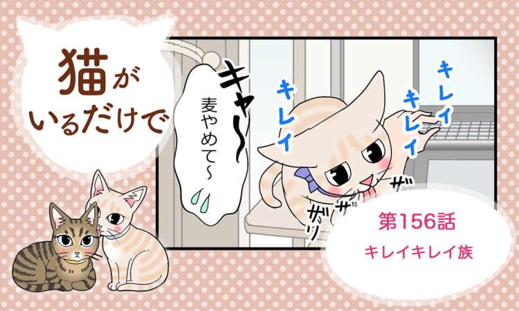 【まんが】第156話:【キレイキレイ族】まんが描き下ろし連載♪ 猫がいるだけで(著者:暁龍)