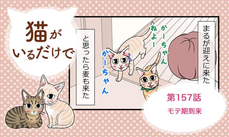 【まんが】第157話:【モテ期到来】まんが描き下ろし連載♪ 猫がいるだけで(著者:暁龍)