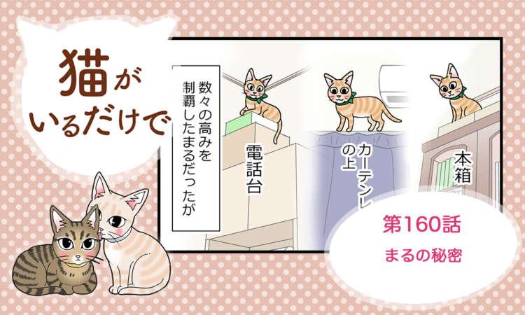 【まんが】第160話:【まるの秘密】まんが描き下ろし連載♪ 猫がいるだけで(著者:暁龍)