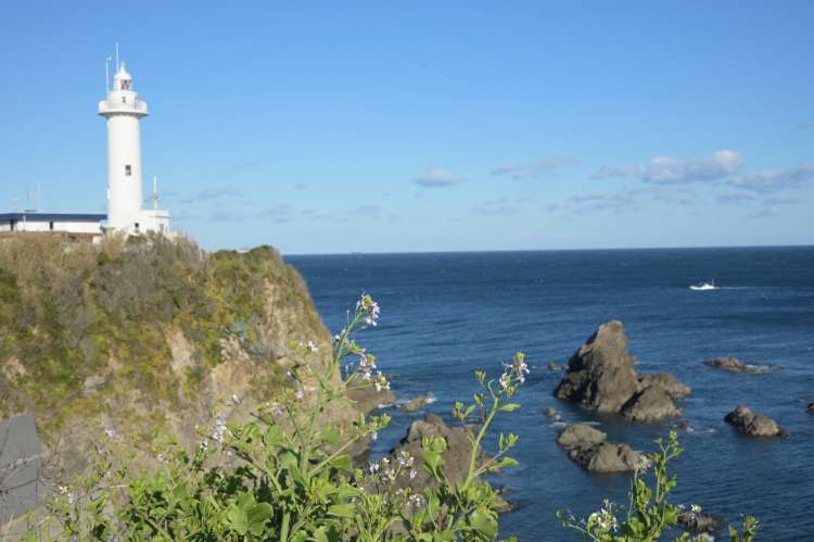 美しい白亜の大王崎灯台