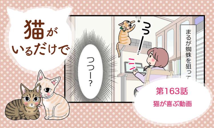 【まんが】第163話:【猫が喜ぶ動画】まんが描き下ろし連載♪ 猫がいるだけで(著者:暁龍)