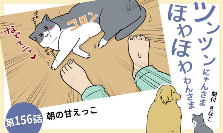 【まんが】第156話:【朝の甘えっこ】まんが描き下ろし連載♪ツンツンにゃんさま ほわほわわんさま