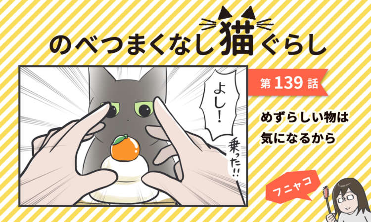 【まんが】第139話:【めずらしい物は気になるから】まんが描き下ろし連載♪ のべつまくなし猫ぐらし