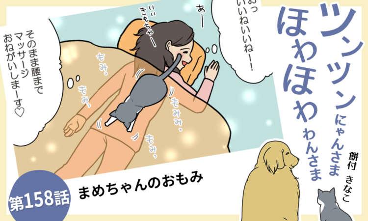 【まんが】第158話:【まめちゃんのおもみ】ツンツンにゃんさま ほわほわ わんさま