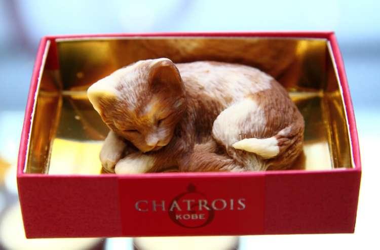 【猫びより】猫モチーフの洋菓子が可愛い「シャトロワ」元町本店【神戸】(辰巳出版)