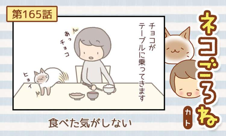【まんが】第165話:【食べた気がしない】まんが描き下ろし連載♪ ネコごろね(著者:カト)