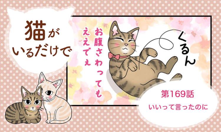 【まんが】第169話:【いいって言ったのに】まんが描き下ろし連載♪ 猫がいるだけで(著者:暁龍)