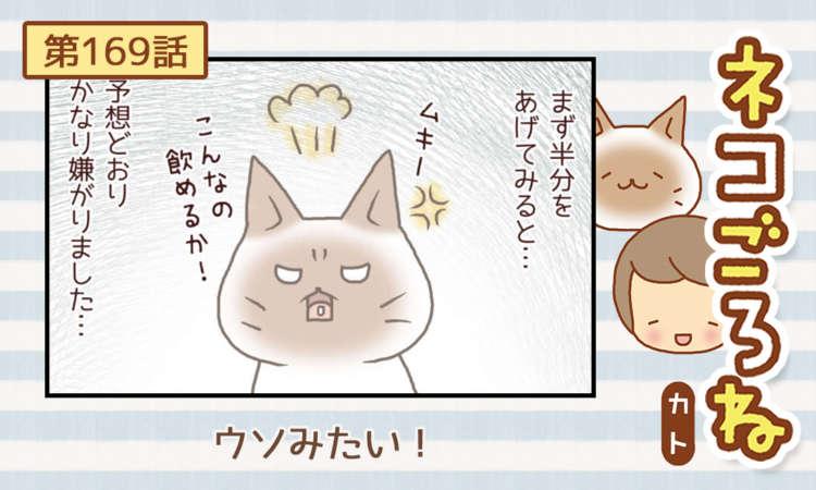 【まんが】第169話:【ウソみたい!】まんが描き下ろし連載♪ ネコごろね(著者:カト)