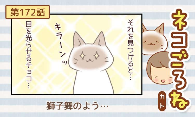【まんが】第172話:【獅子舞のよう…】まんが描き下ろし連載♪ ネコごろね(著者:カト)
