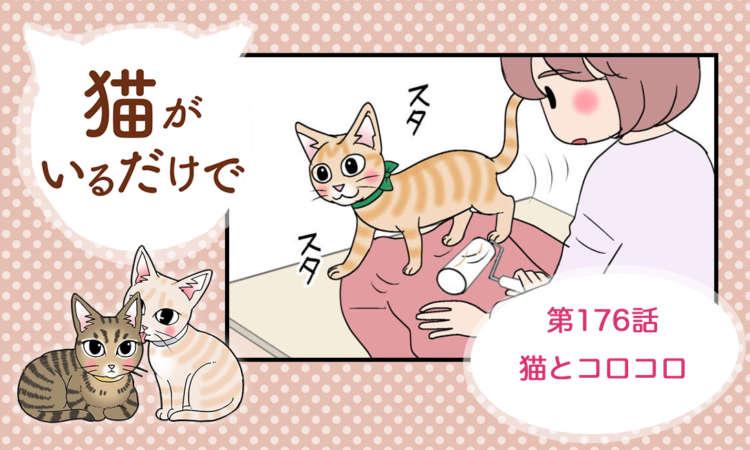 【まんが】第176話:【猫とコロコロ】まんが描き下ろし連載♪ 猫がいるだけで(著者:暁龍)