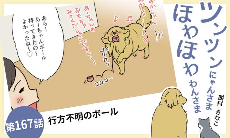 【まんが】第167話:【行方不明のボール】まんが描き下ろし連載♪ツンツンにゃんさま ほわほわわんさま