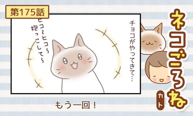 【まんが】第175話:【もう一回!】まんが描き下ろし連載♪ ネコごろね(著者:カト)