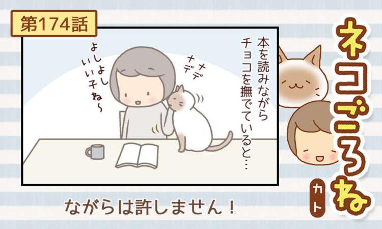 【まんが】第174話:【ながらは許しません!】まんが描き下ろし連載♪ ネコごろね(著者:カト)