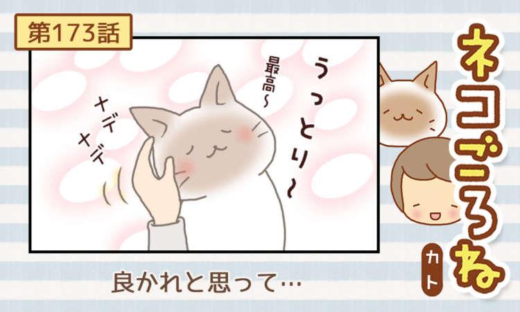 【まんが】第173話:【良かれと思って…】まんが描き下ろし連載♪ ネコごろね(著者:カト)
