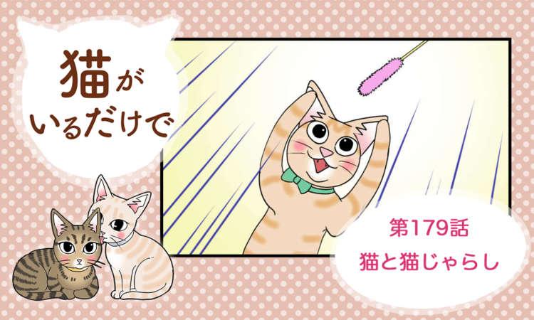 【まんが】第179話:【猫と猫じゃらし】まんが描き下ろし連載♪ 猫がいるだけで(著者:暁龍)