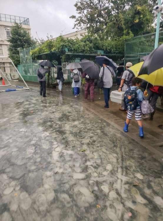 尾山台小学校にできた避難者の列には、ペット連れも(写真提供・菊池ひとみ)