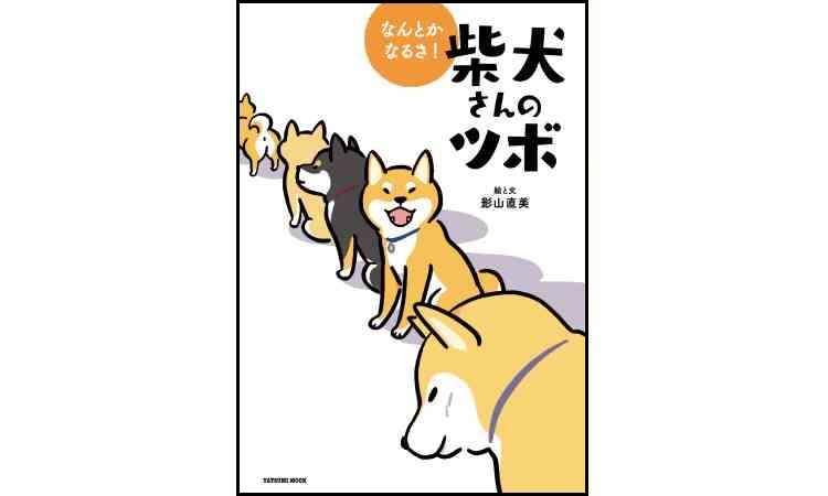 柴犬さんたちの成長がおもしろい!『なんとかなるさ! 柴犬さんのツボ』