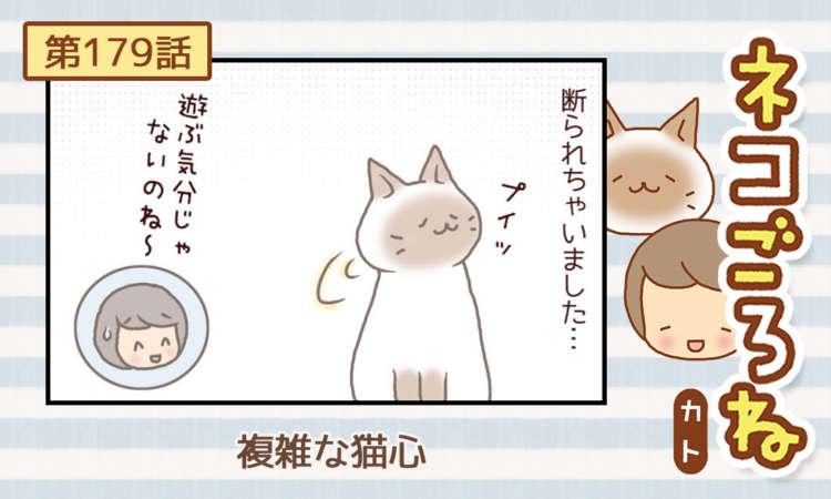 【まんが】第179話:【複雑な猫心】まんが描き下ろし連載♪ ネコごろね(著者:カト)