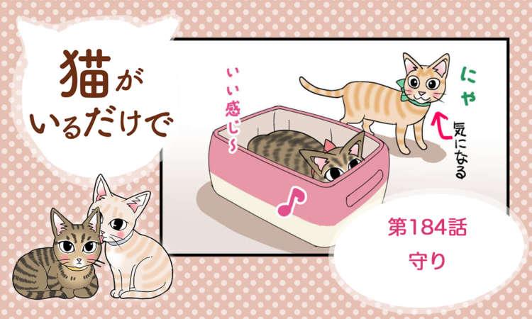 【まんが】第184話:【守り】まんが描き下ろし連載♪ 猫がいるだけで(著者:暁龍)