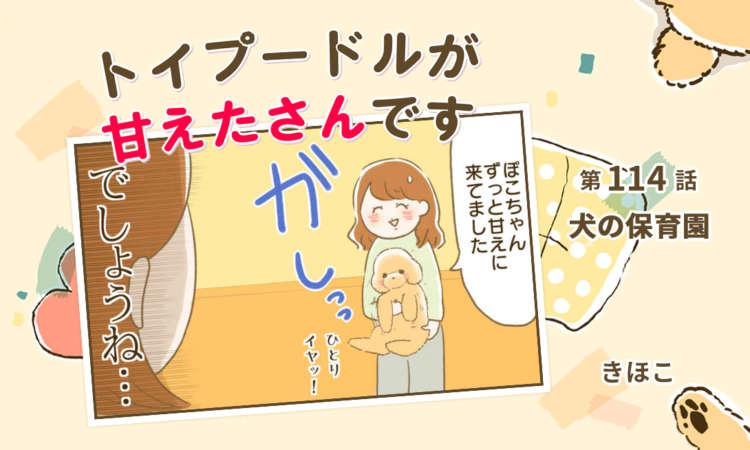 【まんが】第114話:【犬の保育園】まんが描き下ろし連載♪ トイプードルが甘えたさんです