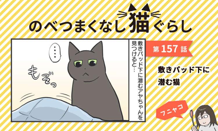 【まんが】第157話:【敷きパッド下に潜む猫】まんが描き下ろし連載♪ のべつまくなし猫ぐらし
