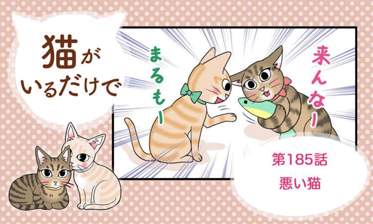 【まんが】第185話:【悪い猫】まんが描き下ろし連載♪ 猫がいるだけで(著者:暁龍)