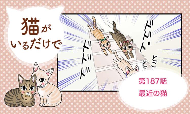 【まんが】第187話:【最近の猫】まんが描き下ろし連載♪ 猫がいるだけで(著者:暁龍)