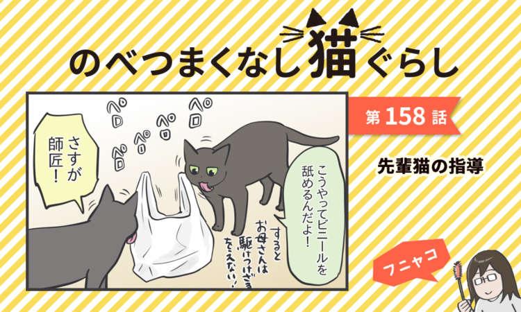 【まんが】第158話:【先輩猫の指導】まんが描き下ろし連載♪ のべつまくなし猫ぐらし