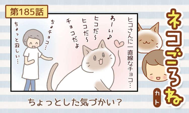 【まんが】第185話:【ちょっとした気づかい?】まんが描き下ろし連載♪ ネコごろね(著者:カト)