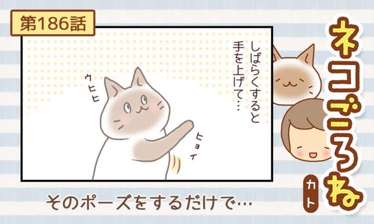 【まんが】第186話:【そのポーズをするだけで…】まんが描き下ろし連載♪ ネコごろね(著者:カト)