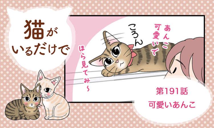 【まんが】第191話:【可愛いあんこ】まんが描き下ろし連載♪ 猫がいるだけで(著者:暁龍)