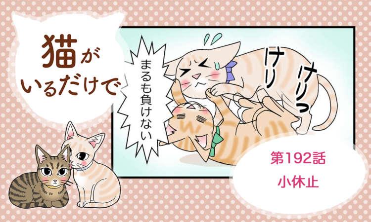 【まんが】第192話:【小休止】まんが描き下ろし連載♪ 猫がいるだけで(著者:暁龍)