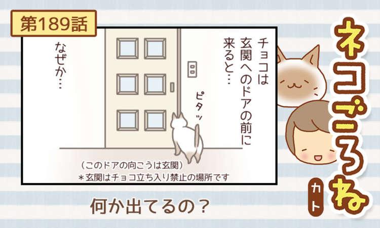 【まんが】第189話:【何か出てるの?】まんが描き下ろし連載♪ ネコごろね(著者:カト)