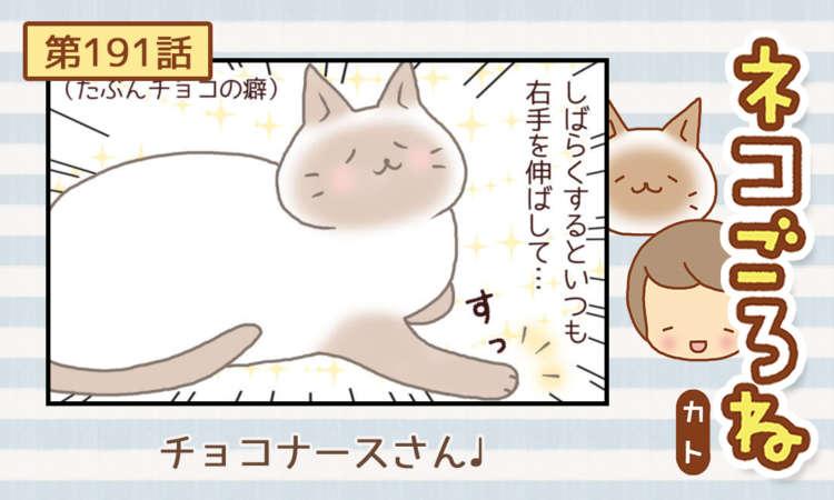【まんが】第191話:【チョコナースさん♩】まんが描き下ろし連載♪ ネコごろね(著者:カト)