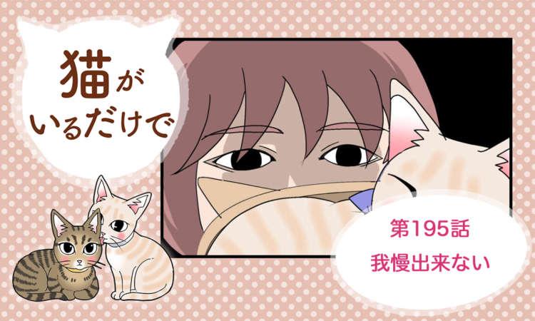【まんが】第195話:【我慢出来ない】まんが描き下ろし連載♪ 猫がいるだけで(著者:暁龍)