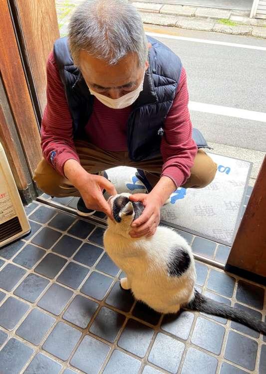 猫たちはみんな優しい重吉さんが大好き