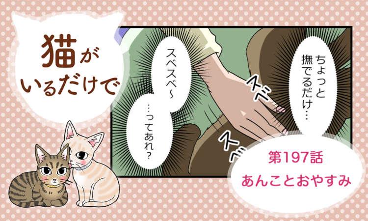 【まんが】第197話:【あんことおやすみ】まんが描き下ろし連載♪ 猫がいるだけで(著者:暁龍)
